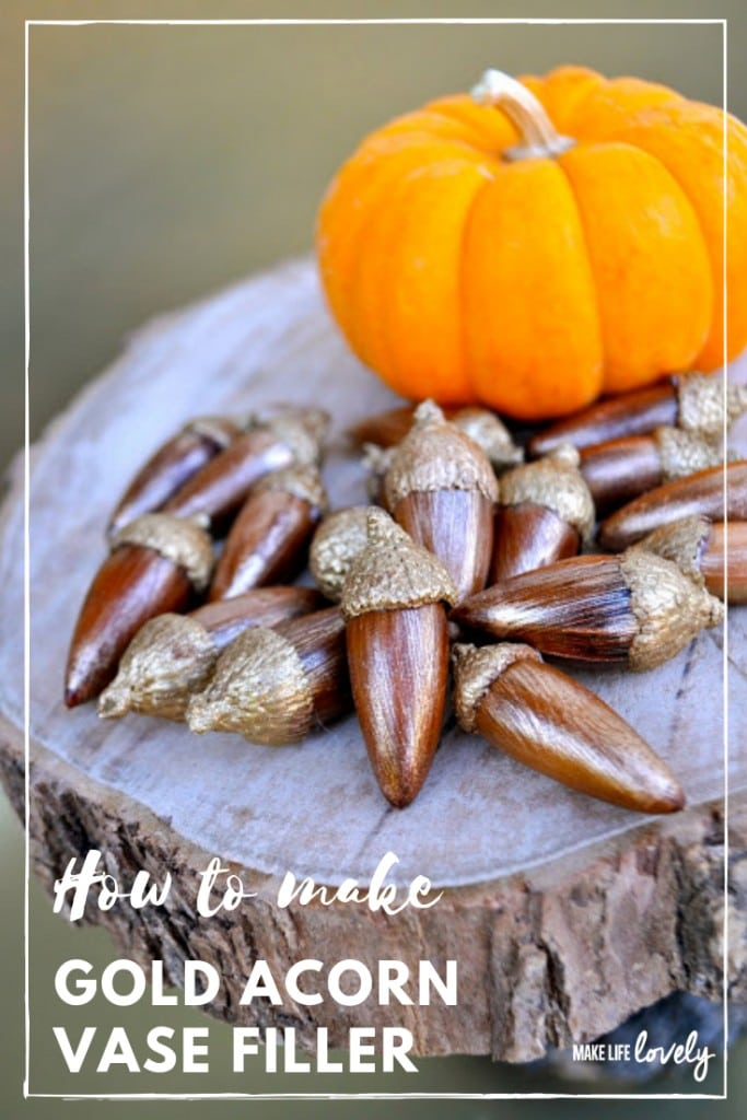 How to make gold acorn vase filler. Turn plain acorns into a beautiful bronze and gold acorn vase filler in just a few steps! These pretty acorns are a great acorn craft to update your house for fall.