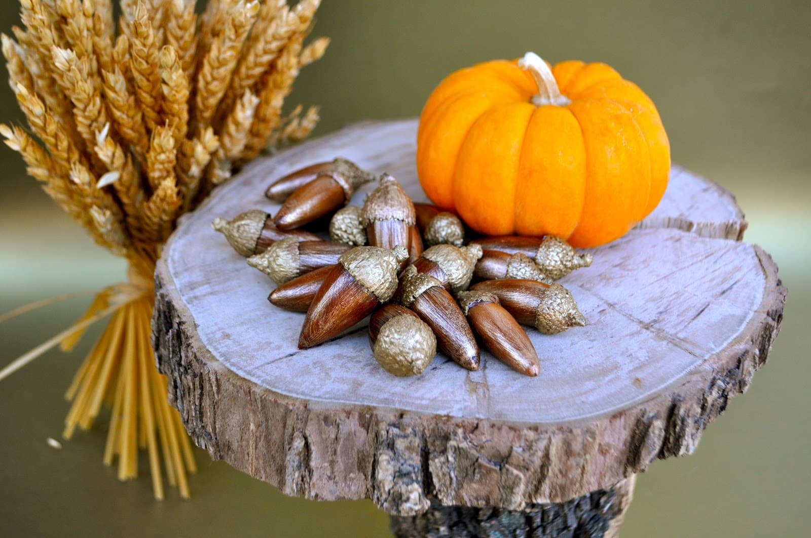 Acorn crafts