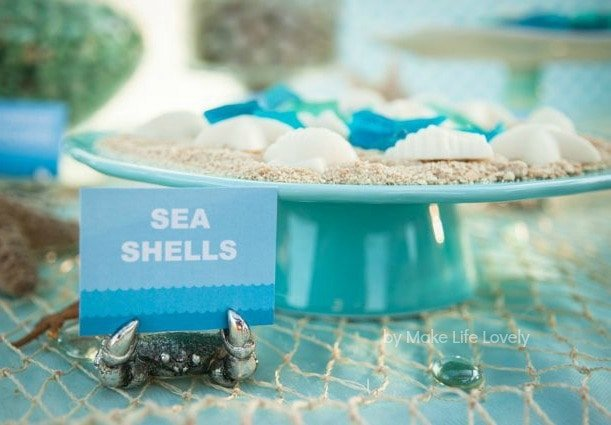 Chocolate Sea Shells For An Ocean Or Under The Birthday Party