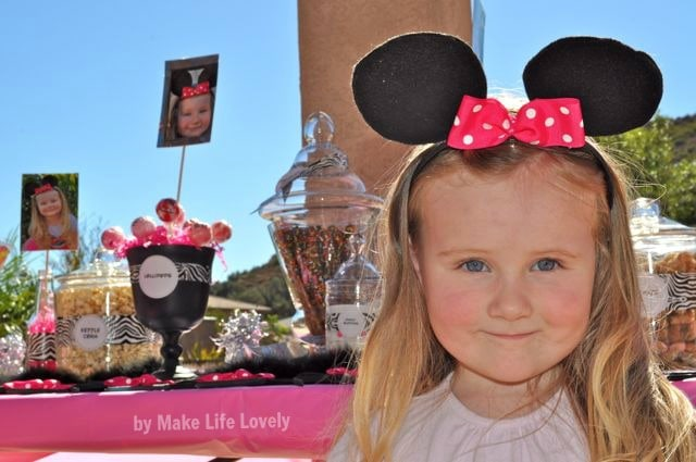 Pink and zebra minnie mouse birthday party