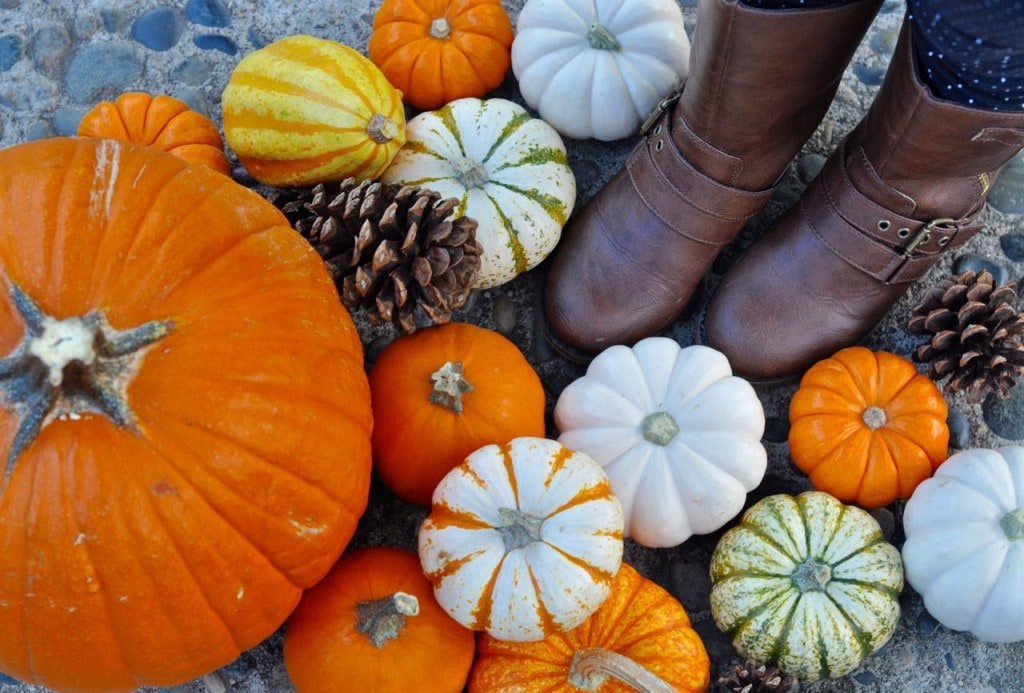 Fall Boots #ohsofamous