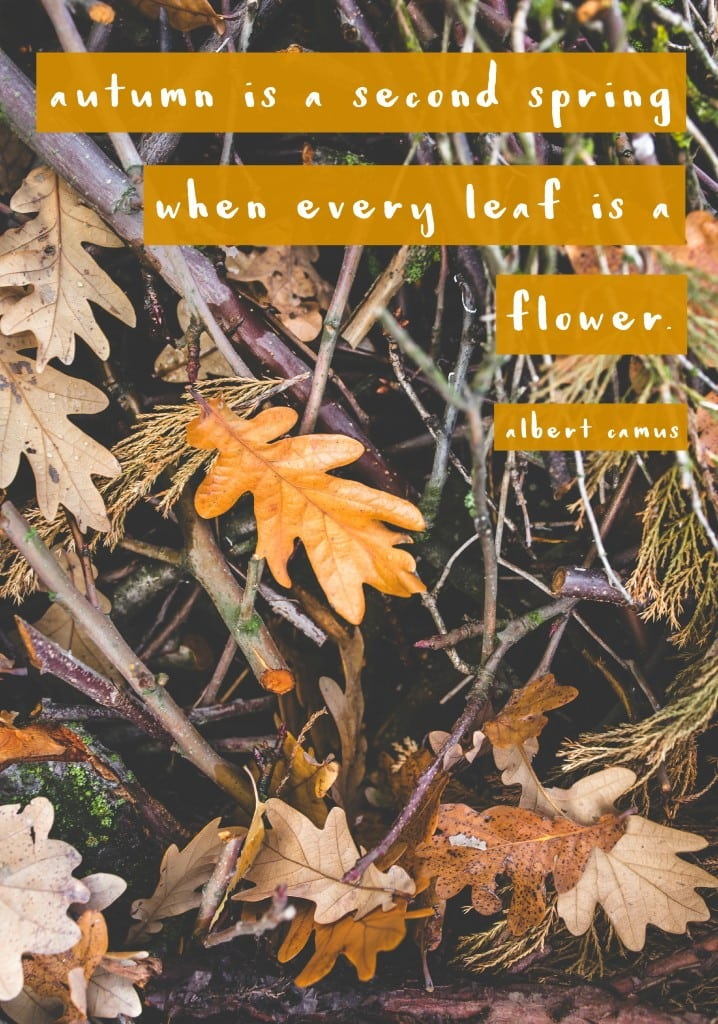 """Autumn is a second spring when every leaf is a flower.""- Fall quote"