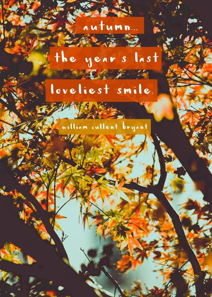 """Autumn... the year's last loveliest smile.""- Fall quote"