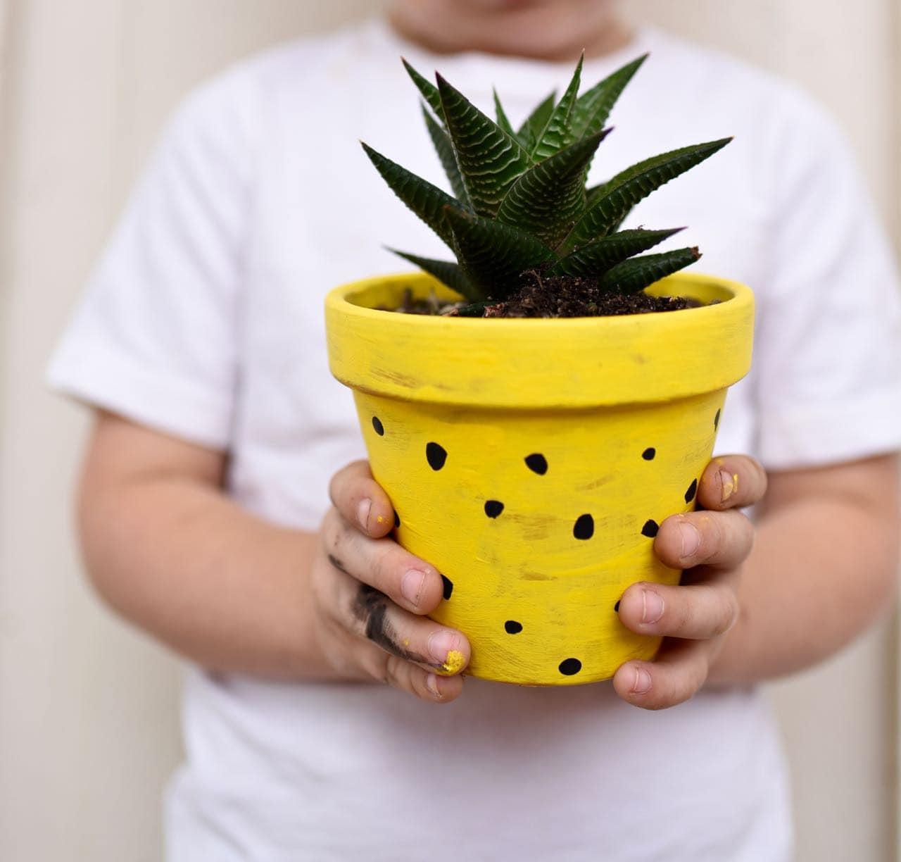 DIY Pineapple Planter Craft for Kids