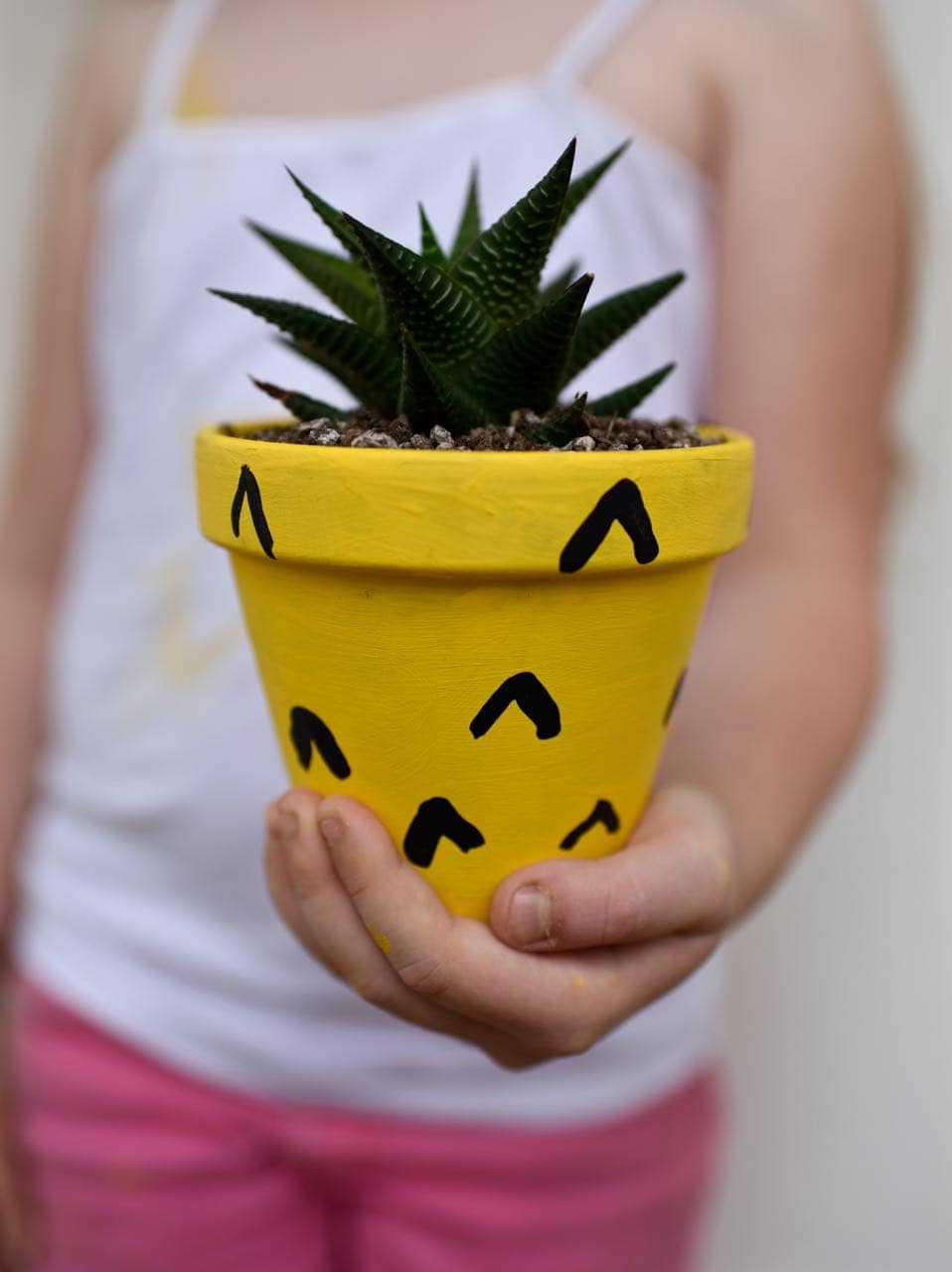 DIY Pineapple Planter Craft
