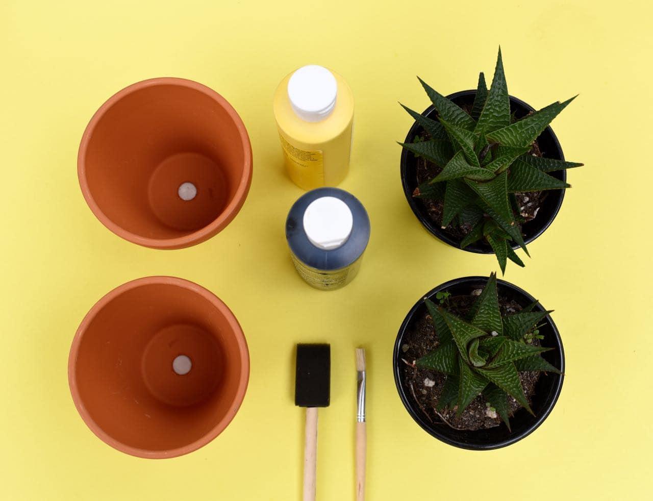 DIY pineapple planter supplies