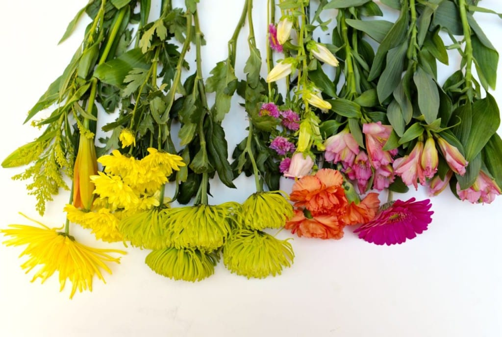 Separate stems of grocery store bouquet