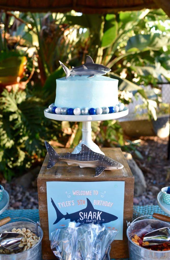 Shark birthday party ideas