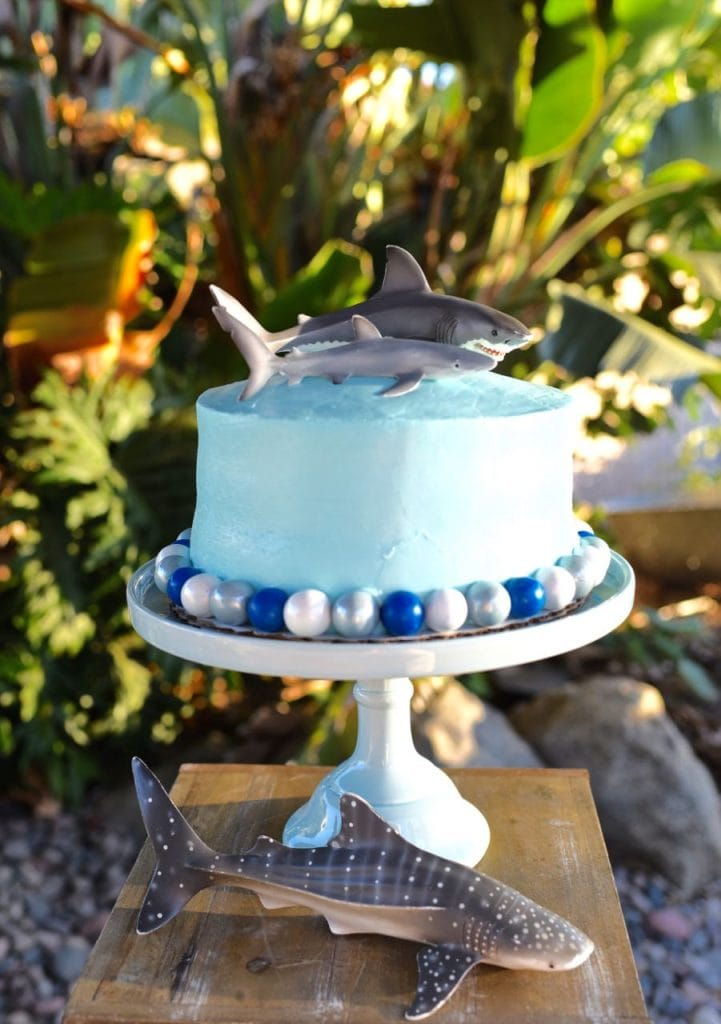 Shark birthday party cake from a store-bought cake. Buy a cake and decorate it yourself for MUCH less!