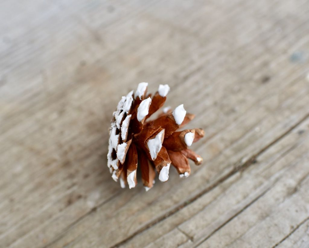 DIY pinecone ornaments with snow