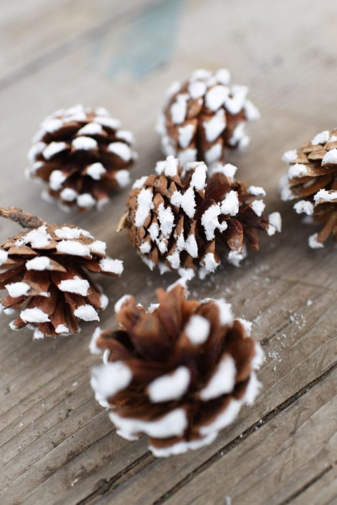 How to make pinecone ornaments for Christmas