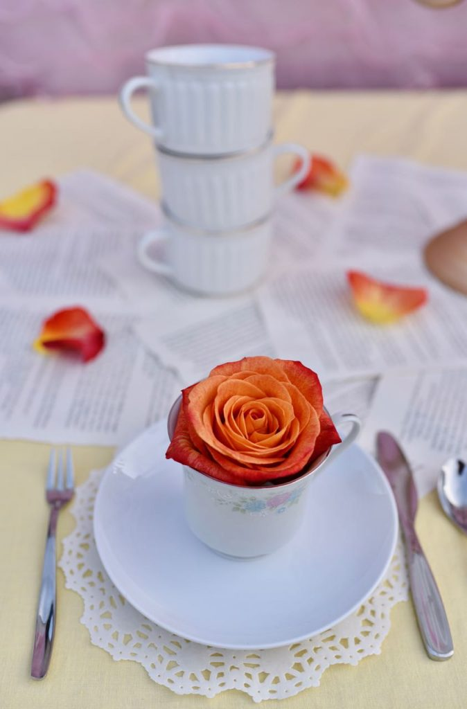 Belle Beauty and the Beast party ideas