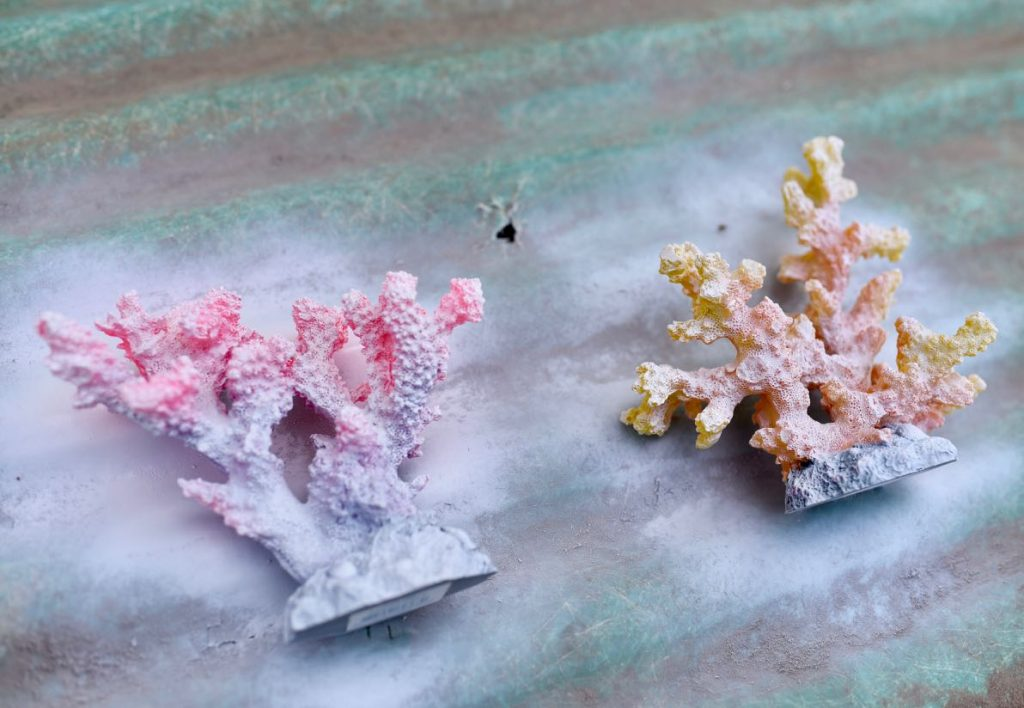 Spray paint the coral for DIY coral bookends