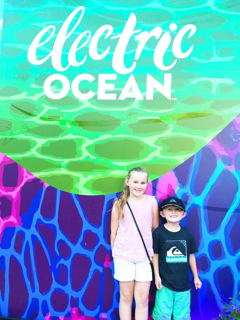 Electric Ocean SeaWorld San Diego