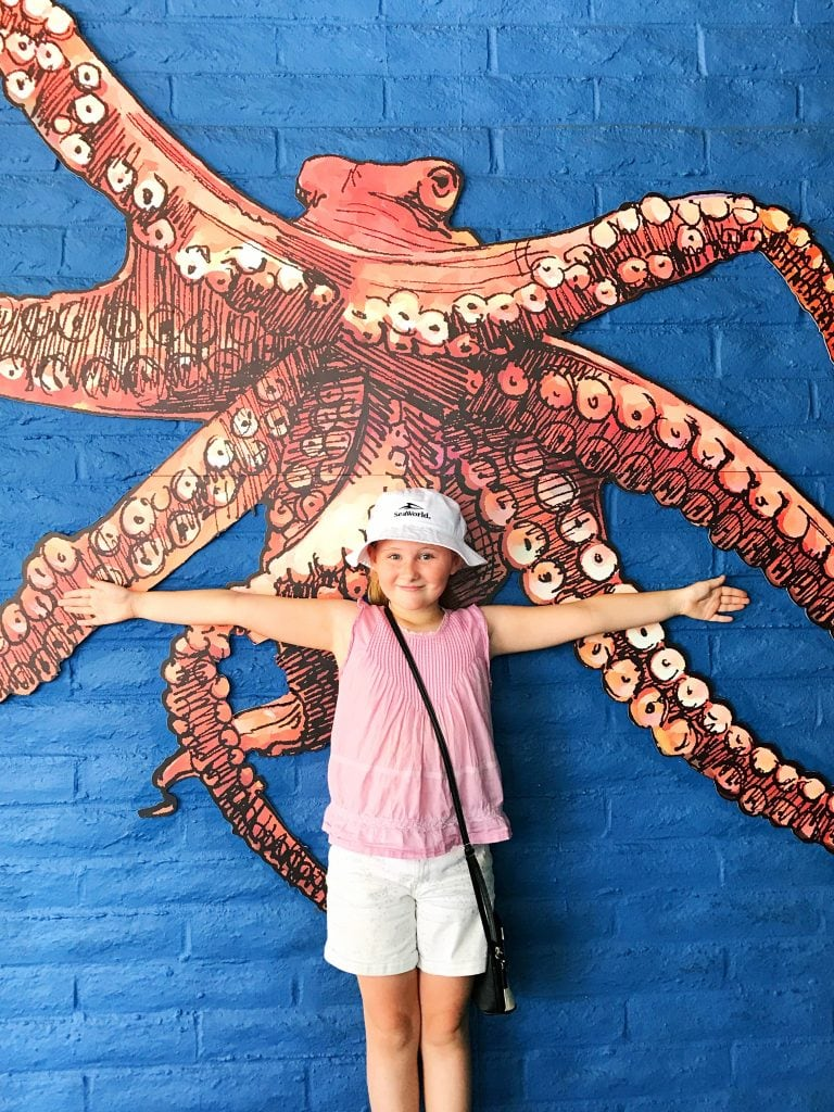Octopus at Sea World San Diego