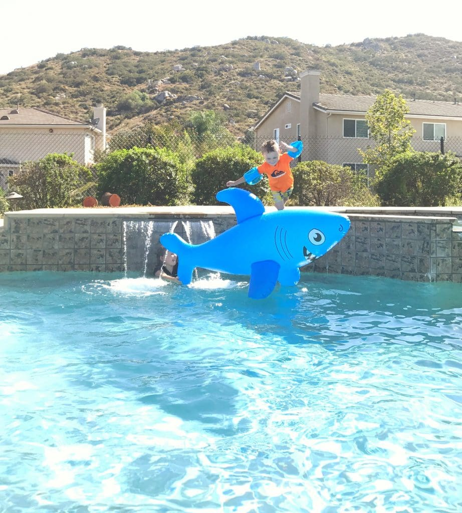Best pool floats shark