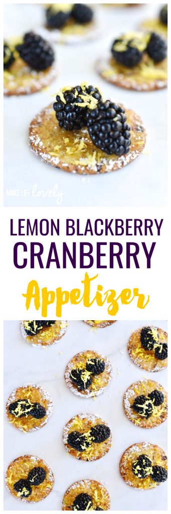 Lemon blackberry cranberry appetizer that is so easy to put together and tastes amazing!