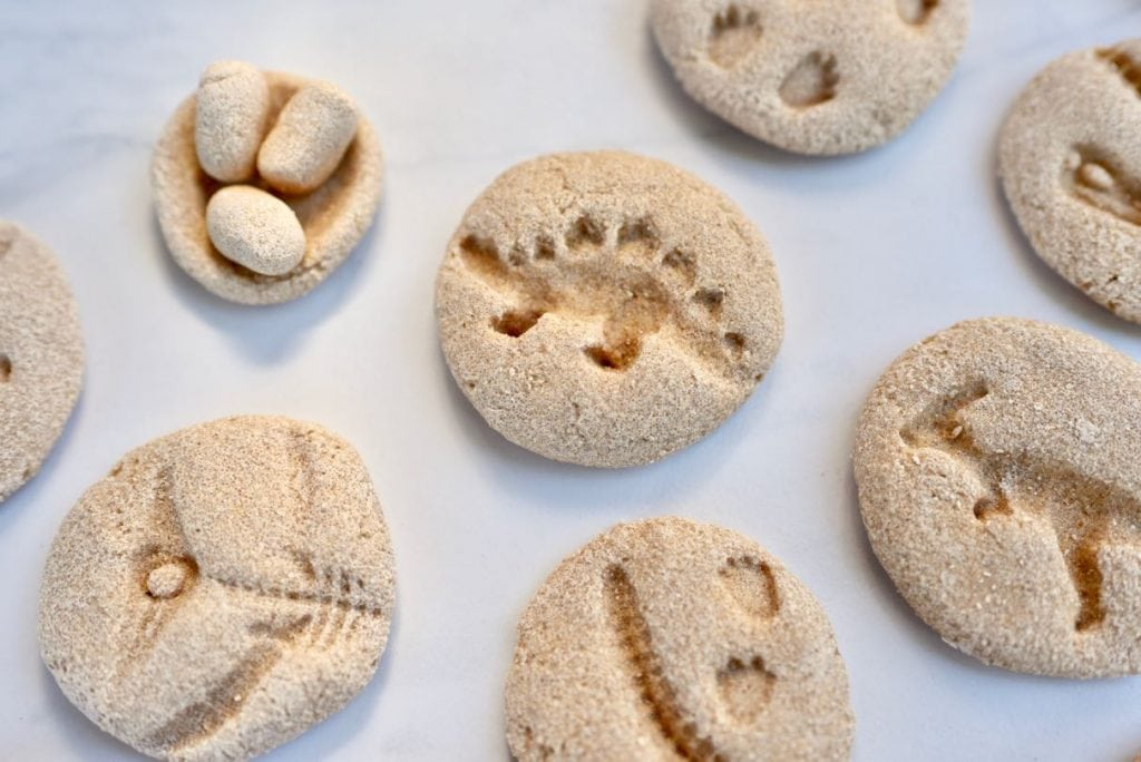 DIY dinosaur fossils activity for kids