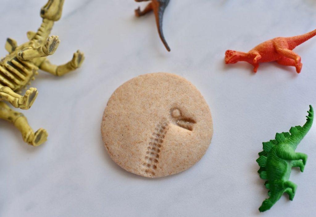 DIY dinosaur fossils tutorial for dinosaur dig party