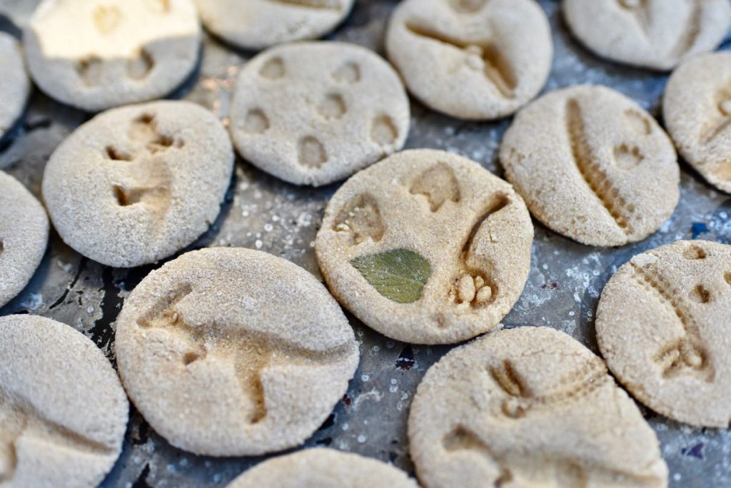 DIY dinosaur fossils with dough
