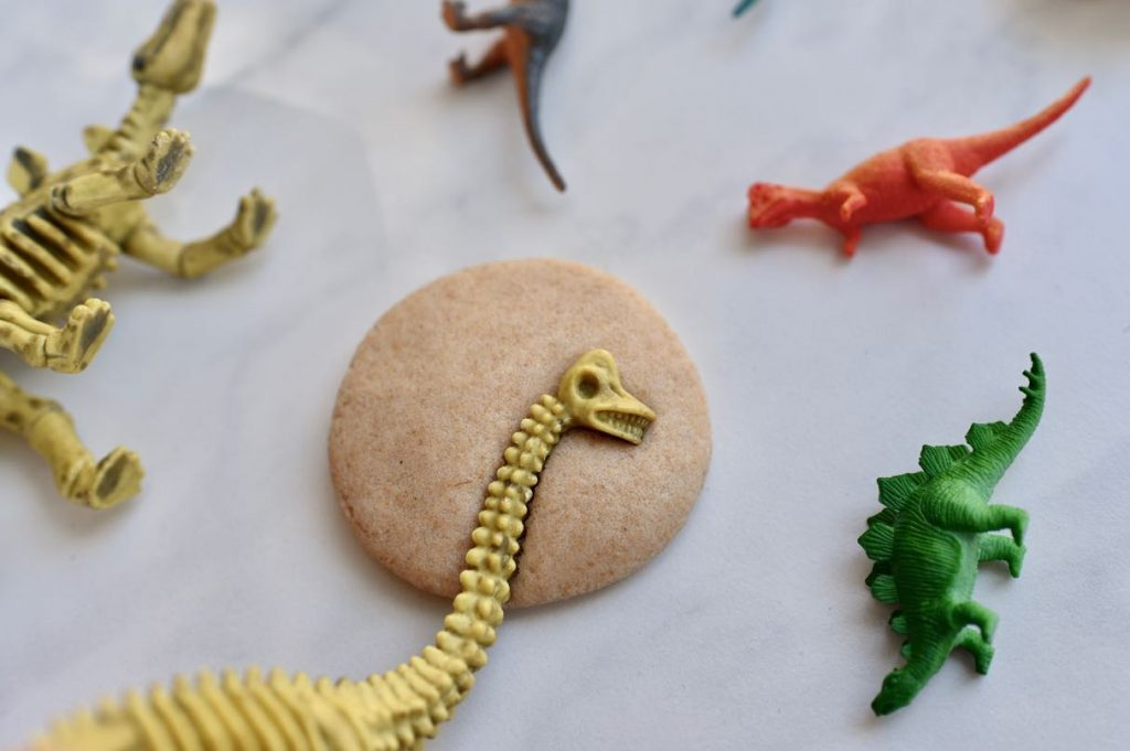 How to make DIY dinosaur fossils with salt dough