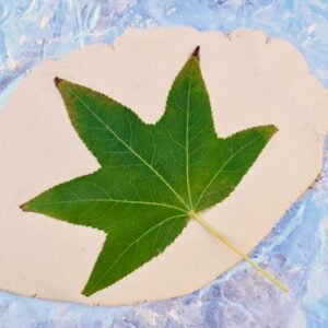 green leaf on rolled out clay