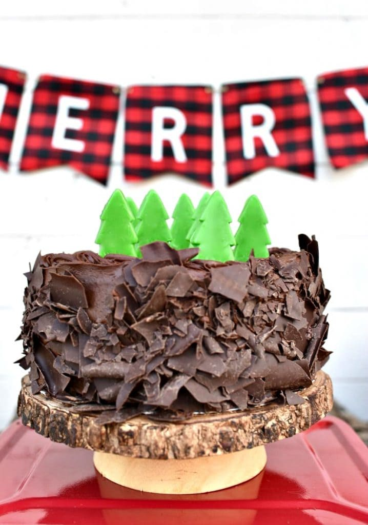 Buffalo plaid party cake for Christmas