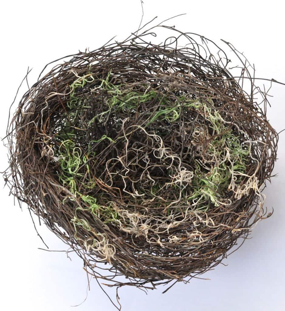 DIY Bird Nest Tutorial