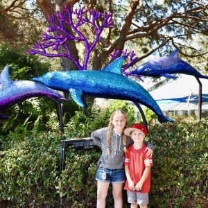 Best things to do at SeaWorld San Diego with kids