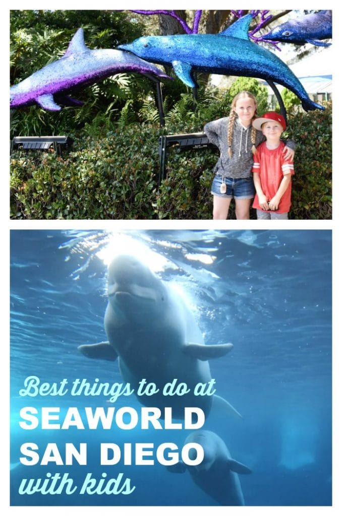 Best things to do at SeaWorld San Diego with kids. SeaWorld San Diego is a very kid-friendly place! Here's our list of the best things to do with your children there!