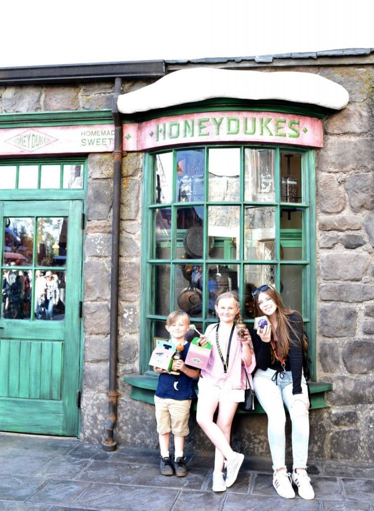 Chocolate frogs at Honeydukes and Top 10 things to do at Universal Studios Hollywood