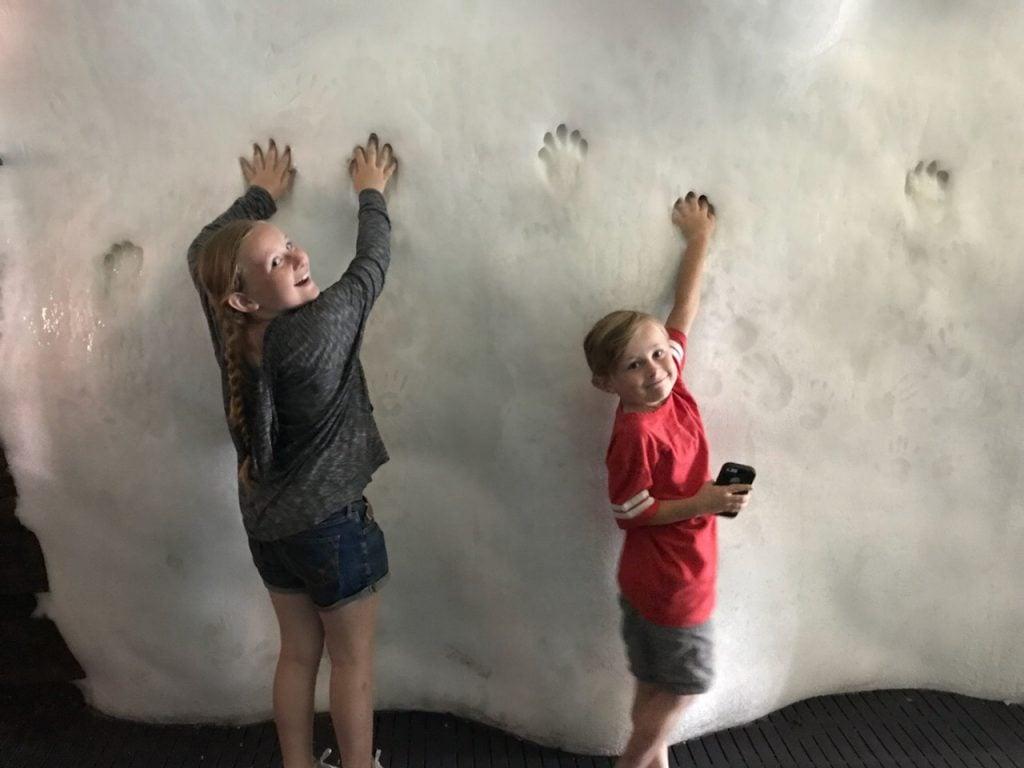 SeaWorld San Diego with kids Wild Arctic ice wall