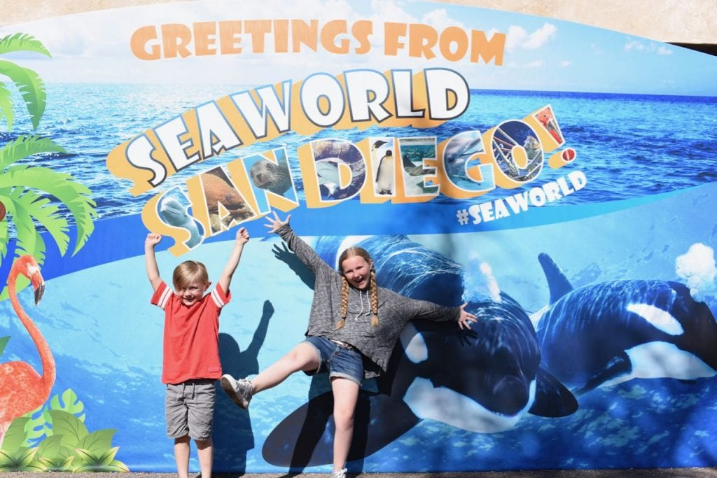 Things to do at SeaWorld San Diego with kids