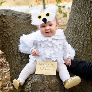 Hedwig Baby Owl Costume DIY That's No-Sew… Really!