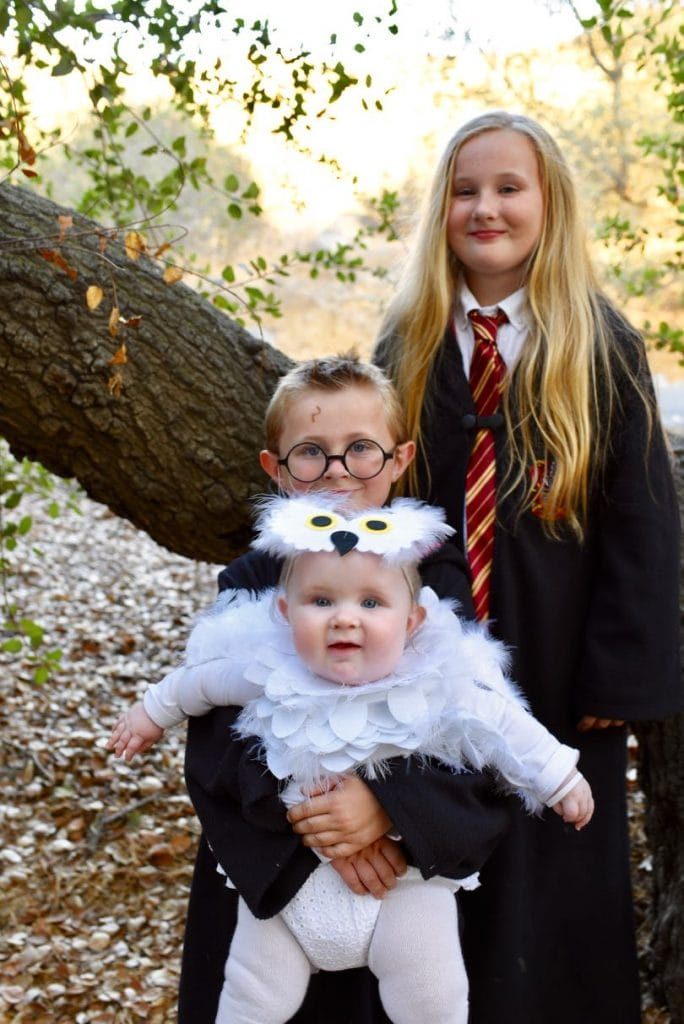 Harry Potter family costumes