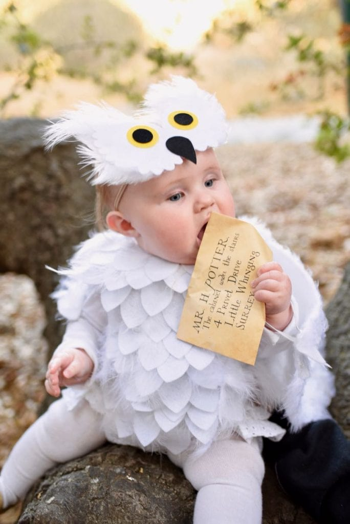 Hedwig costume