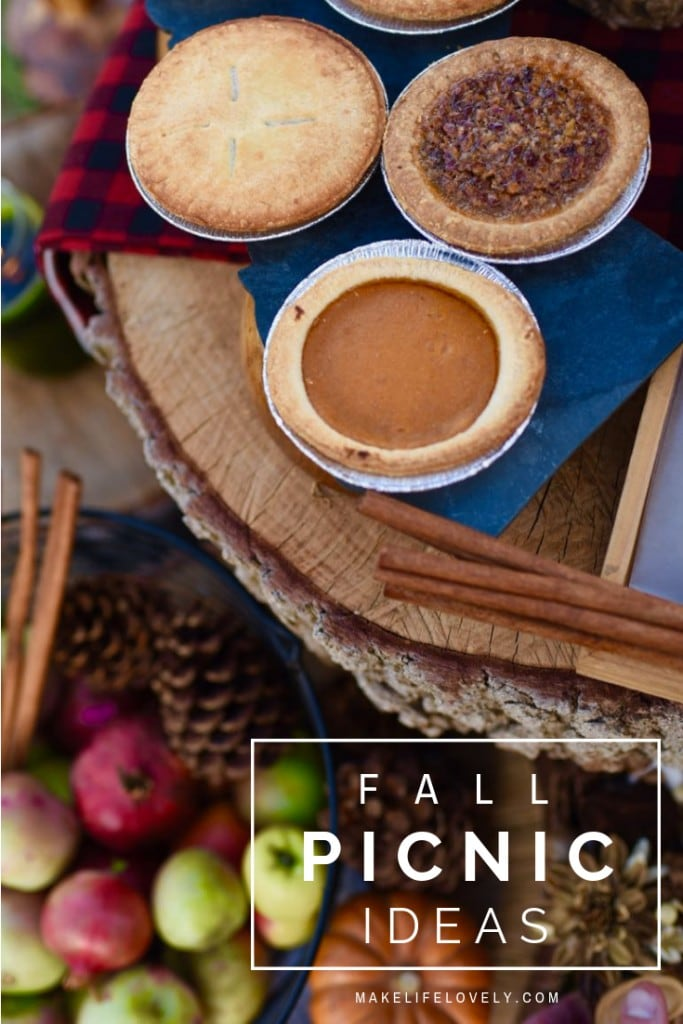 A lovely fall picnic with lots of fall picnic ideas to inspire you!
