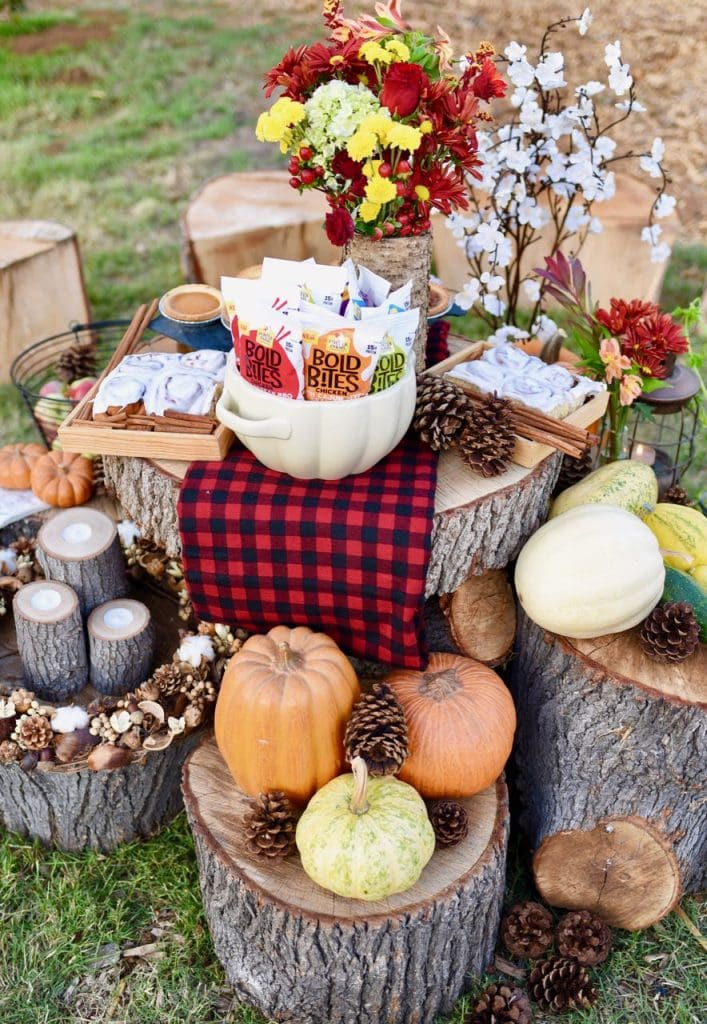 Fall picnic and picnic ideas