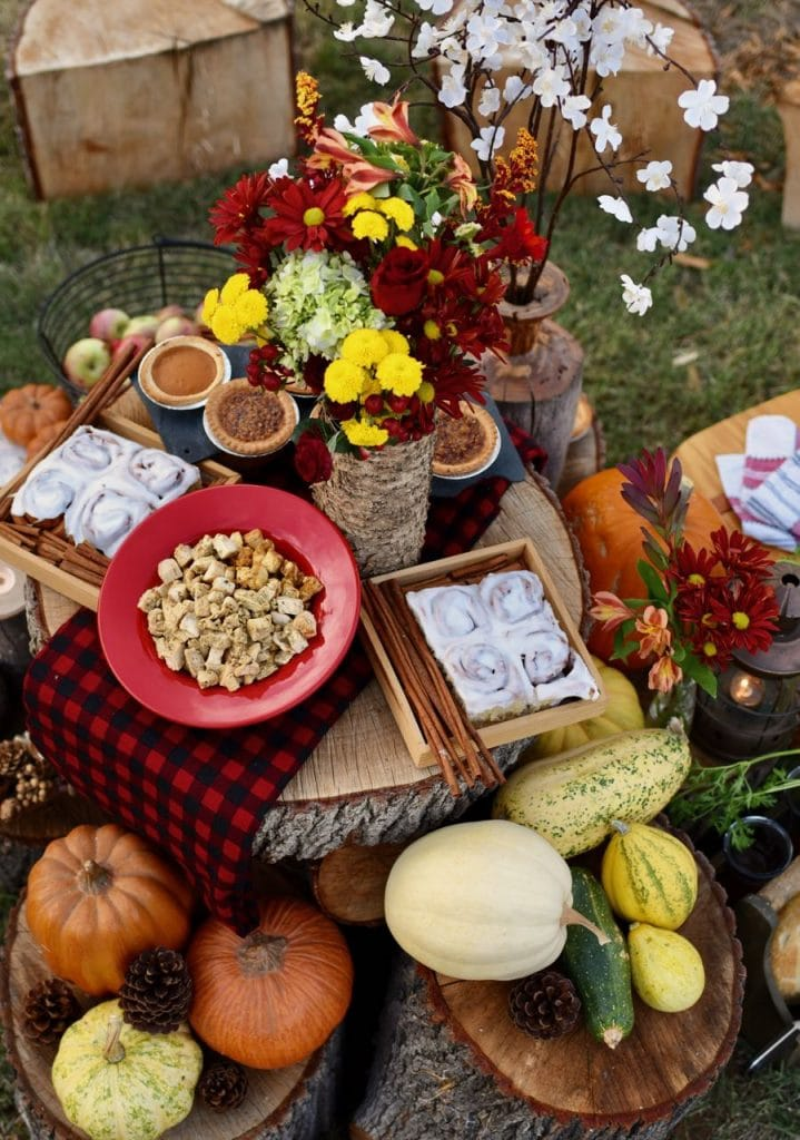 Fall picnic party