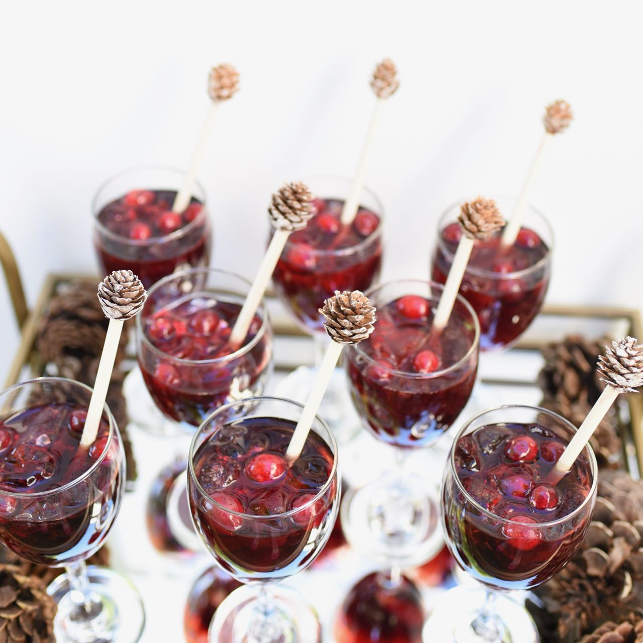 Easy Non Alcoholic Holiday Drink {Your Guests Will LOVE!}