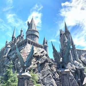 The Wizarding World of Harry Potter tips