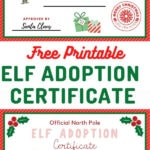 elf adoption certificate for boy and girl