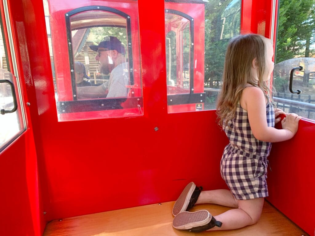 girl in train looking out window