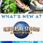 New rides at Universal Studios Hollywood 2021